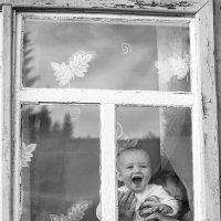 В окне :: Светлана Мякотникова