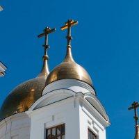 купола Киррило-Мефодиевского собора :: Dmitry Sharafeev