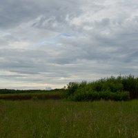 Небо над Тарусой. :: Яков Реймер