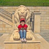 я на солнышке сижу и на львенка не гляжу... :: Александр Корчемный