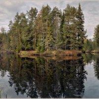 Берег реки :: Vadim WadimS67