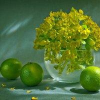 зеленое.. :: зоя полянская