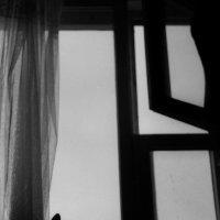 окно :: Ольга Лукьяненок