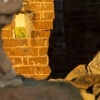 В заброшенном храме... :: Павел Гусев