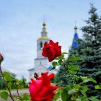 Зилантов монастырь :: Наиль Салихов