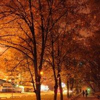 Осенние краски :: Андрей Сорокин