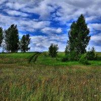 Летний день :: Андрей Куприянов