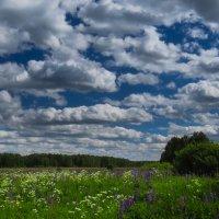 Такие разные небеса :: Наталья Лакомова