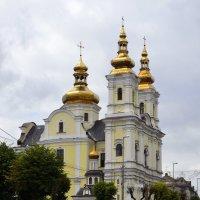 Спасо-Преображенський собор Вінниця :: Дмитрий Гончаренко