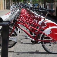 Прокат велосипедов :: Алла Панасенко