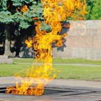 Стихия огня и тень мефистофеля :: Виталий Авакян
