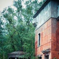 Есть в графском парке старый дом... :: Любовь Пасхина