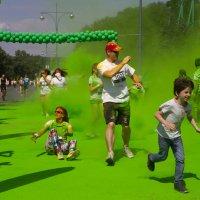 Зеленый этап :: Елена Жукова