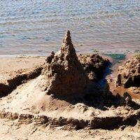 замок на песке :: linnud