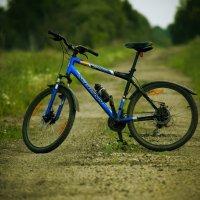 Велосипед :: Андрей Степуленко