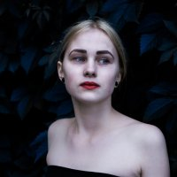 ***** :: Лиза Волчкова