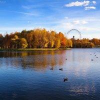 Осенний островок :: Anastasiya Efremova