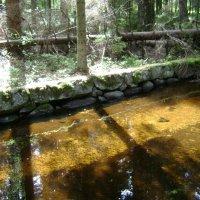 Лесной ручей в гранитных берегах :: Марина Домосилецкая