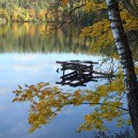 Осень :: Татьяна Тихончук