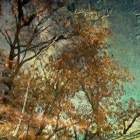 ...осень на мостовой... :: Галина Юняева