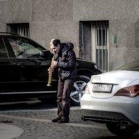 такси-блюз :: ник. петрович земцов