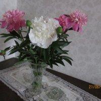 Цветы :: раиса Орловская