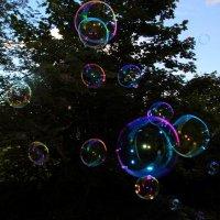 Пузырьки с огоньками :: Aнна Зарубина