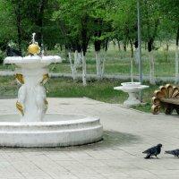 прогулка у фонтана :: Юлия Мошкова