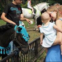 Девушка- вот вам деньги- покатайтесь на лошадке! :: Марина Жилина