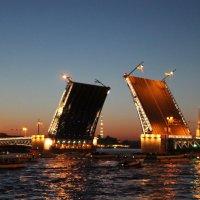 Развод мостов в Питере :: Софья Мязина
