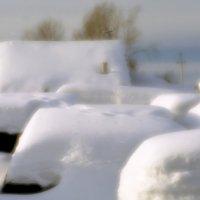 Пуховые сугробы зимы :: Валерий Талашов