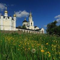 Храм в лютиках :: Дмитрий Авдонин
