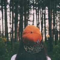 в лесу :: Дарья Белова