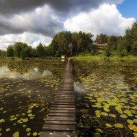 Дорогой через озеро :: Vladimir