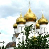 Золотые купола :: Александр Надежин