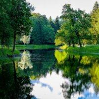 Вечером в парке. :: Андрей Якимюк