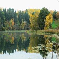 Осень. :: Екатерина Артамонова