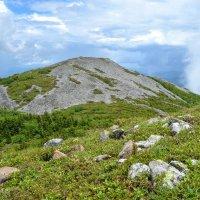 Гора Лысая :: Михаил Рулькевич