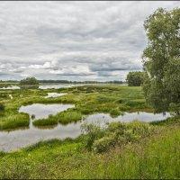 Рыбацкий рай 2 :: Евгений Никифоров