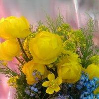 Воркутинские цветочки :: Евгения Глебова