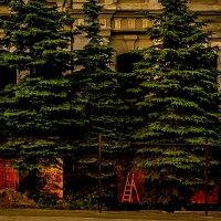И днём и ночью :: Sergey Kuznetcov