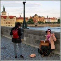 Приветливая Прага :: N. Burmistrova Наталья
