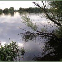 Река Москва. :: Ольга Кривых