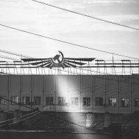 """луч солнца через """"серп и молот"""" :: Анна Карпова"""