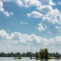 Июнь. Облака. :: Olesya