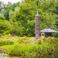 японский сад :: Ольга Шульгина