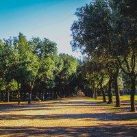 Villa Borghese, Rome, Italy :: Olga Darganchik