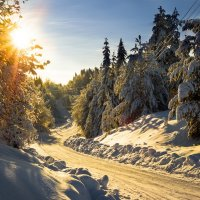 Зимние дороги... :: Федор Кованский