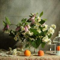 С абрикосами :: Маргарита Епишина