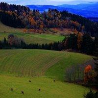 Осень в Альпах :: Елена Олейникова